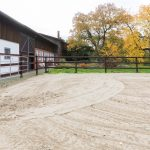 Der Sandplatz der Tierarztpraxis Paeger