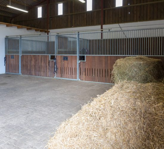 Pferdeboxen der Tierarztpraxis Paeger
